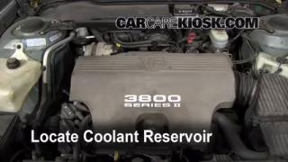 Coolant Level Check: 1992-1999 Bonneville