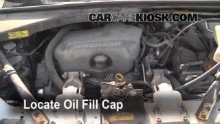 1997-2005 Pontiac Trans Sport: Fix Oil Leaks