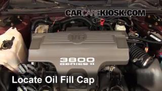 1995-1999 Chevrolet Monte Carlo: Fix Oil Leaks