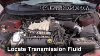 Add Transmission Fluid: 1996-1999 Ford Taurus