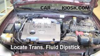 Fix Transmission Fluid Leaks Nissan Maxima (2000-2003)