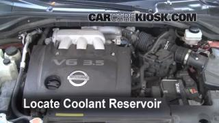 Coolant Level Check: 2003-2007 Murano