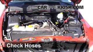 2002-2005 Dodge Ram 1500 Hose Check