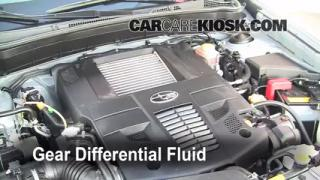 Fix Transmission Fluid Leaks Subaru Forester (2009-2013)