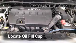 How to Add Oil Toyota Corolla (2009-2013)
