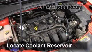 Fix Antifreeze Leaks: 2012-2013 Ford Focus
