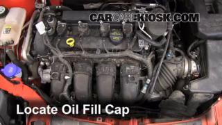 How to Add Oil Ford Focus (2012-2013)