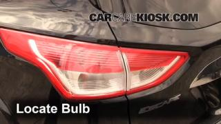 Reverse Light Replacement 2013-2014 Ford Escape