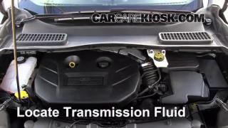 Add Transmission Fluid: 2013-2014 Ford Escape