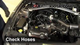 2010-2013 Ford Mustang Hose Check