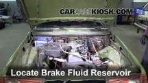 1983 Mercedes-Benz 200D 2.0L 4 Cyl. Diesel Brake Fluid