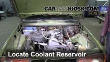 1983 Mercedes-Benz 200D 2.0L 4 Cyl. Diesel Coolant (Antifreeze)