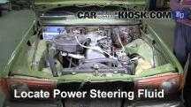 1983 Mercedes-Benz 200D 2.0L 4 Cyl. Diesel Power Steering Fluid