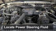 1984 Ford F-250 6.9L V8 Diesel Standard Cab Pickup Power Steering Fluid