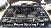 1994 Chevrolet Camaro 3.4L V6 Coupe Power Steering Fluid