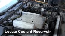 1995 BMW 540i 4.0L V8 Coolant (Antifreeze)