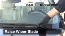 1995 BMW 540i 4.0L V8 Windshield Wiper Blade (Front)