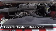 1995 Dodge Ram 1500 5.2L V8 Standard Cab Pickup Coolant (Antifreeze)