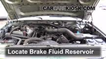 1995 Ford F-250 XL 7.5L V8 Standard Cab Pickup (2 Door) Brake Fluid
