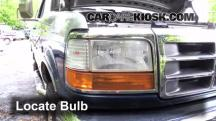 1995 Ford F-250 XL 7.5L V8 Standard Cab Pickup (2 Door) Luces