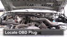 1995 Ford F-250 XL 7.5L V8 Standard Cab Pickup (2 Door) Compruebe la luz del motor