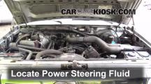 1995 Ford F-250 XL 7.5L V8 Standard Cab Pickup (2 Door) Líquido de dirección asistida