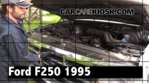 1995 Ford F-250 XL 7.5L V8 Standard Cab Pickup (2 Door) Review