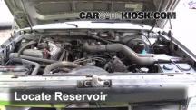 1995 Ford F-250 XL 7.5L V8 Standard Cab Pickup (2 Door) Líquido limpiaparabrisas