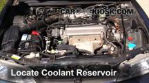 1997 Honda Accord LX 2.2L 4 Cyl. Sedan (4 Door) Coolant (Antifreeze)