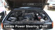 1997 Mitsubishi Montero Sport XLS 3.0L V6 Power Steering Fluid