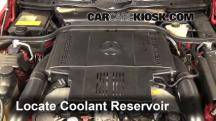 1998 Mercedes-Benz SL500 5.0L V8 Coolant (Antifreeze)