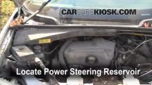 1998 Pontiac Trans Sport Montana 3.4L V6 (4 Door) Líquido de dirección asistida