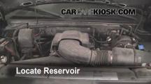 1999 Ford F-150 XLT 4.6L V8 Extended Cab Pickup (4 Door) Líquido limpiaparabrisas