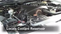 1999 Mercury Grand Marquis LS 4.6L V8 Coolant (Antifreeze)