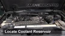 2000 Ford Explorer XLS 4.0L V6 Coolant (Antifreeze)