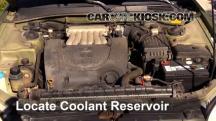 2000 Hyundai Sonata GLS 2.5L V6 Coolant (Antifreeze)