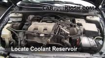 2000 Oldsmobile Alero GL 3.4L V6 Sedan (4 Door) Coolant (Antifreeze)