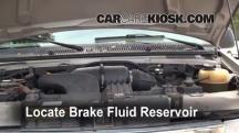 2001 Ford E-150 Econoline Club Wagon XLT 5.4L V8 Brake Fluid