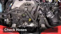 2001 Pontiac Aztek 3.4L V6 Mangueras