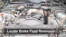 2002 BMW 530i 3.0L 6 Cyl. Brake Fluid