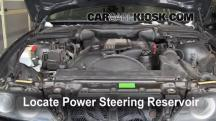 2002 BMW 530i 3.0L 6 Cyl. Power Steering Fluid