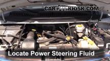 2002 Dodge Ram 1500 Van 5.2L V8 Standard Passenger Van Power Steering Fluid