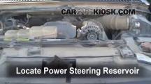 2002 Ford F-250 Super Duty Lariat 7.3L V8 Turbo Diesel Extended Cab Pickup (4 Door) Power Steering Fluid