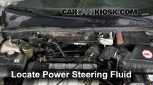 2002 Ford Focus ZX3 2.0L 4 Cyl. Power Steering Fluid