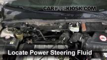 2002 Ford Focus ZX3 2.0L 4 Cyl. Líquido de dirección asistida
