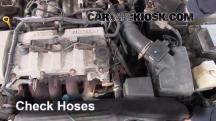 2002 Mazda Protege ES 2.0L 4 Cyl. Hoses