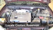 2002 Nissan Maxima GLE 3.5L V6 Coolant (Antifreeze)