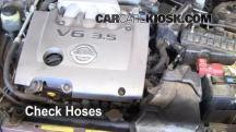 2002 Nissan Maxima GLE 3.5L V6 Hoses