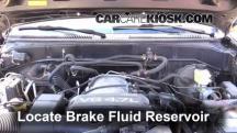 2002 Toyota Sequoia SR5 4.7L V8 Brake Fluid