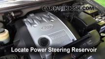 2003 Kia Sedona EX 3.5L V6 Líquido de dirección asistida
